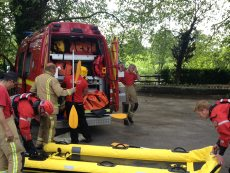 Cow rescued from river at Saltford