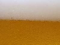 Close-up view of a pint of beer